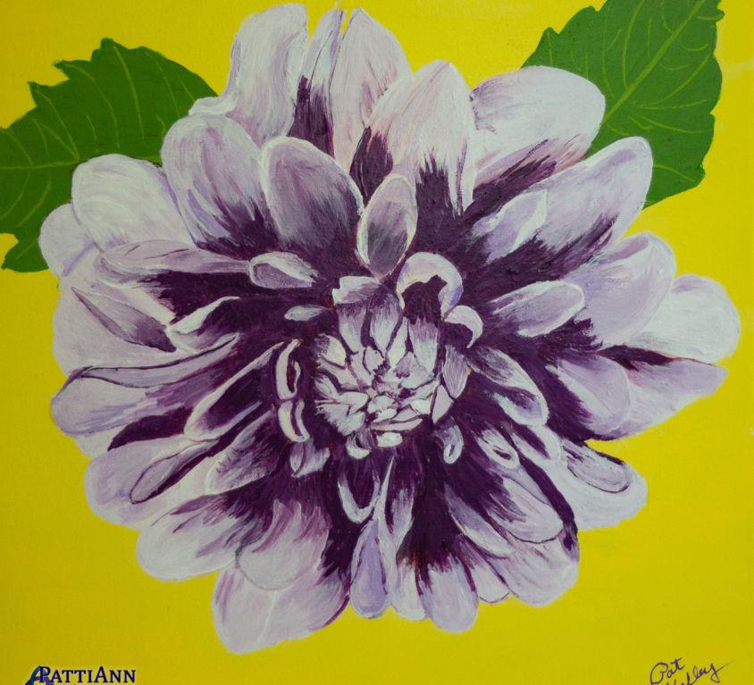 First Flowers of Summer – Dahlia