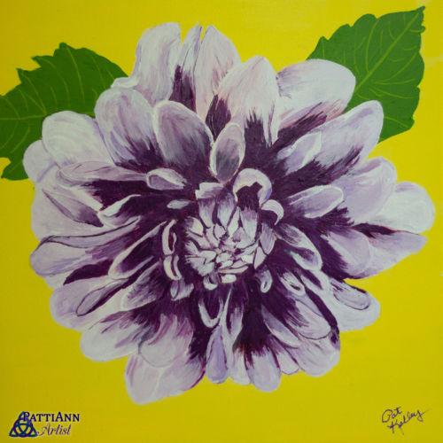 First Summer Flower – Dahlia