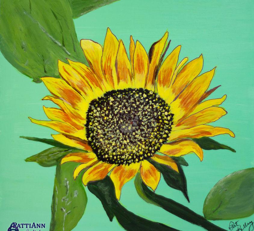First Flowers of Summer – Sunflower